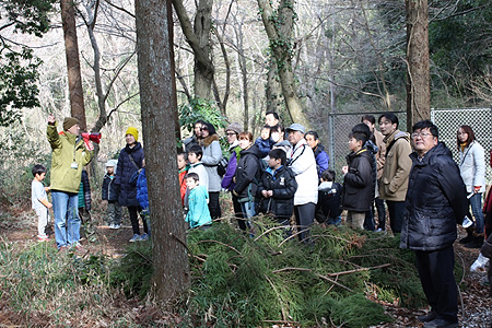 森の散策(4)